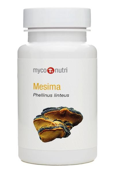 MycoNutri Organic Mesima 60 Capsules (Phellinus linteus)