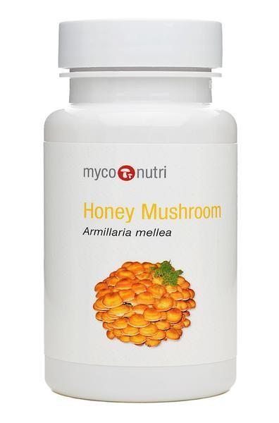 MycoNutri Honey Mushroom 60 Capsules (Armillaria mellea)